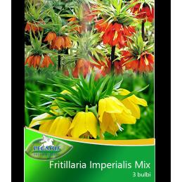FRITILLARIA IMPERIALIS MIX...